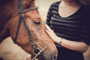 Equine assisted therapy is beneficial for girls.